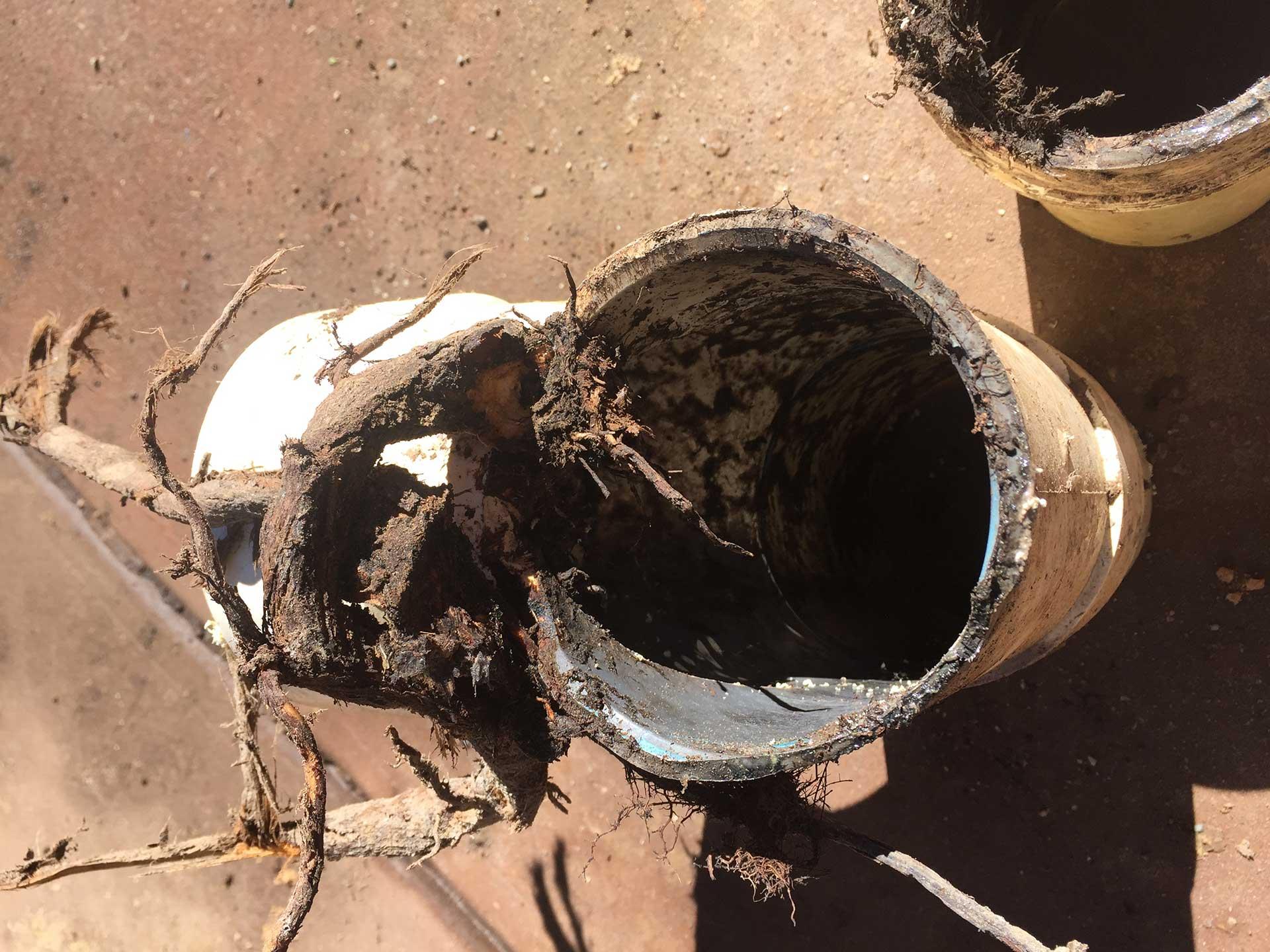 blocked drain Adelaide