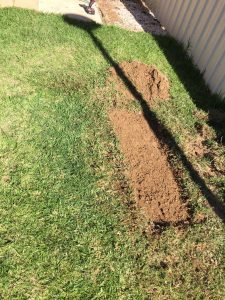Blocked drain repair Adelaide